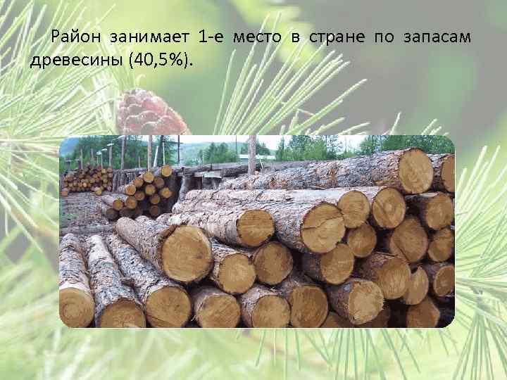 Район занимает 1 -е место в стране по запасам древесины (40, 5%).