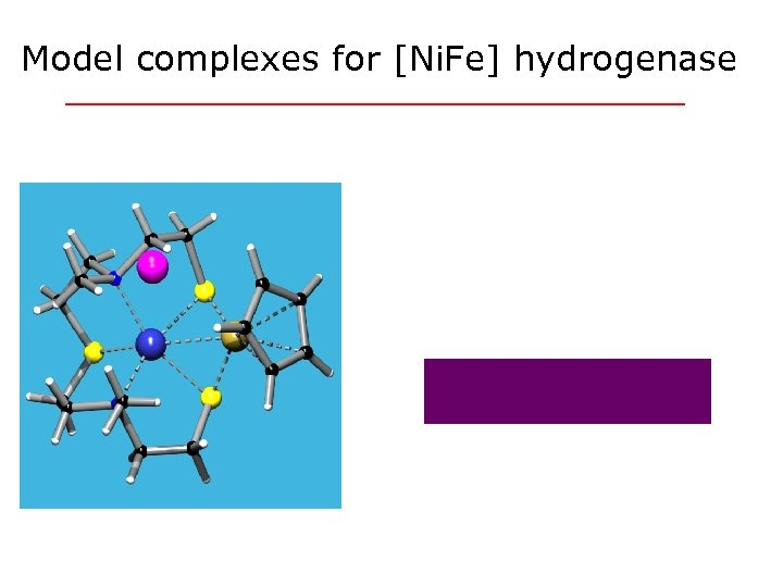 Model complexes for [Ni. Fe] hydrogenase M. Schröder (Nottingham)