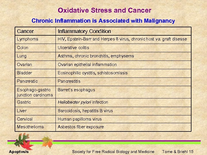 Oxidative Stress and Cancer Chronic Inflammation is Associated with Malignancy Cancer Inflammatory Condition Lymphoma