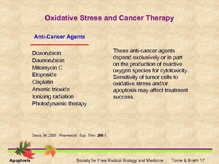 Oxidative Stress and Cancer Therapy Anti-Cancer Agents Doxorubicin Daunorubicin Mitomycin C Etoposide Cisplatin Arsenic