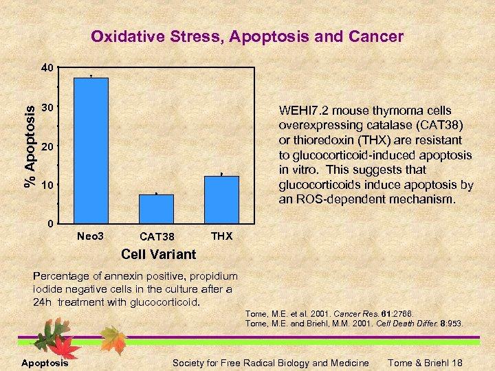 Oxidative Stress, Apoptosis and Cancer % Apoptosis 40 30 WEHI 7. 2 mouse thymoma