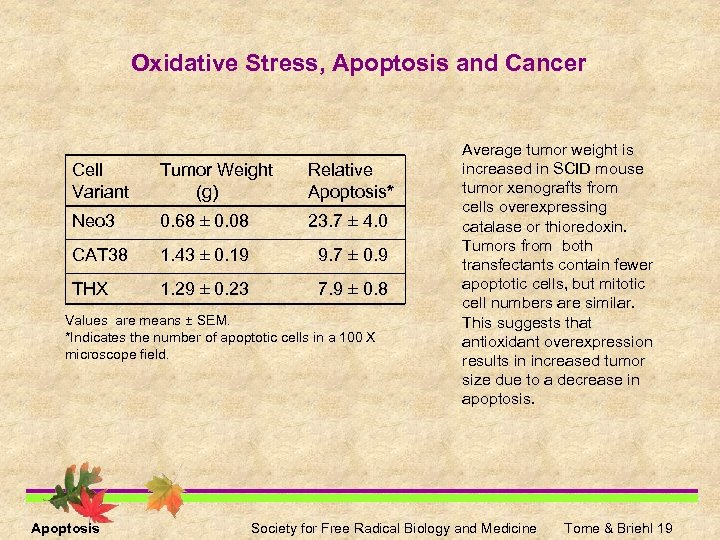 Oxidative Stress, Apoptosis and Cancer Cell Variant Tumor Weight (g) Relative Apoptosis* Neo 3