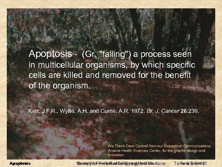 Apoptosis - (Gr.