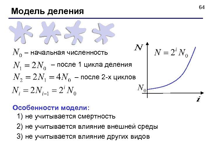 Модель деления – начальная численность – после 1 цикла деления – после 2 -х