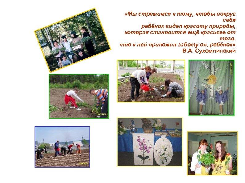 «Мы стремимся к тому, чтобы вокруг себя ребёнок видел красоту природы, которая становится