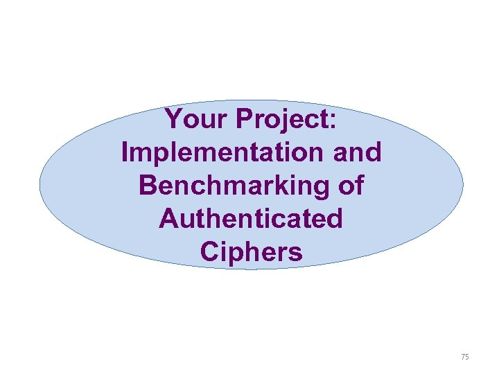 Your Project: Implementation and Benchmarking of Authenticated Ciphers 75