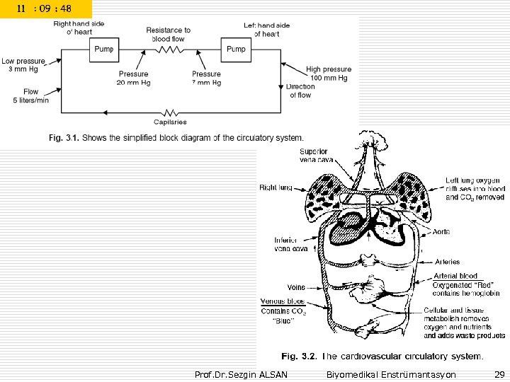 Prof. Dr. Sezgin ALSAN Biyomedikal Enstrümantasyon 29