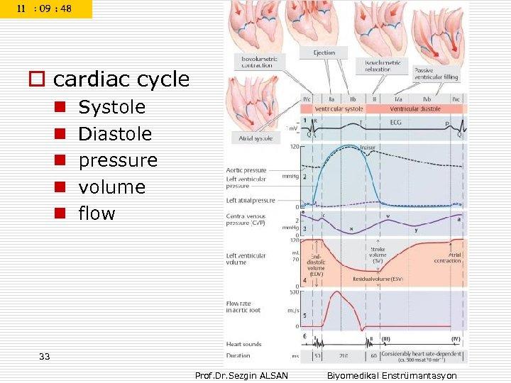 o cardiac cycle n n n Systole Diastole pressure volume flow 33 Prof. Dr.