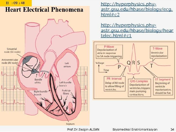 http: //hyperphysics. phyastr. gsu. edu/hbase/biology/ecg. html#c 2 http: //hyperphysics. phyastr. gsu. edu/hbase/biology/hear telec. html#c