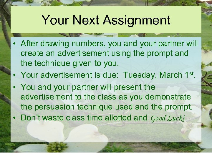 Your Next Assignment • After drawing numbers, you and your partner will create an