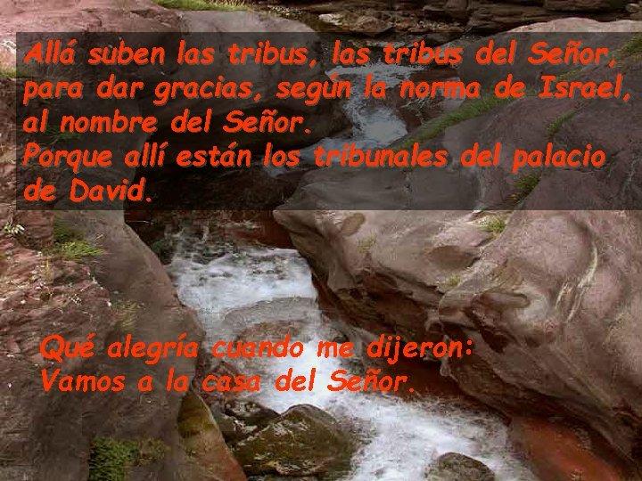 Allá suben las tribus, las tribus del Señor, para dar gracias, según la norma