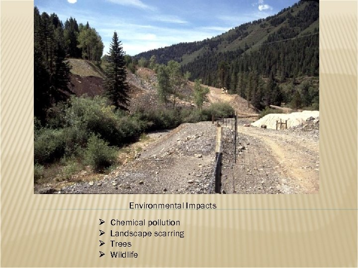 Environmental Impacts Ø Ø Chemical pollution Landscape scarring Trees Wildlife