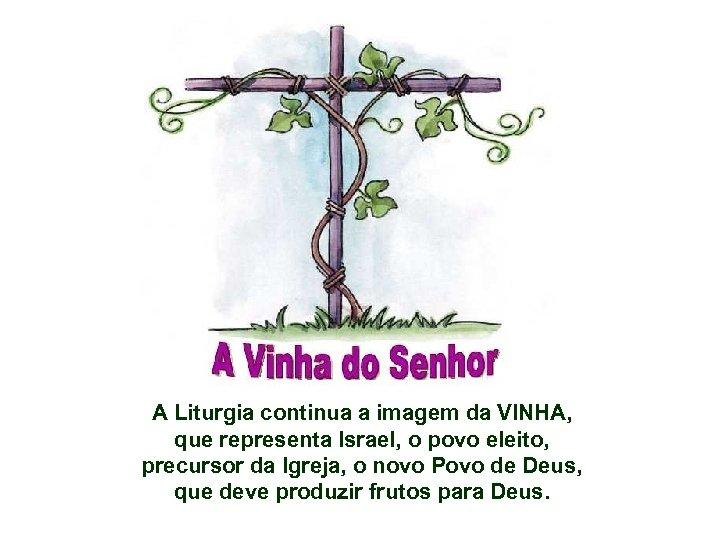 A Liturgia continua a imagem da VINHA, que representa Israel, o povo eleito, precursor