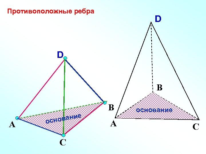 Противоположные ребра D D В А е овани осн С В А основание С