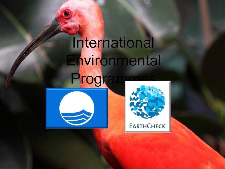 International Environmental Programmes 12