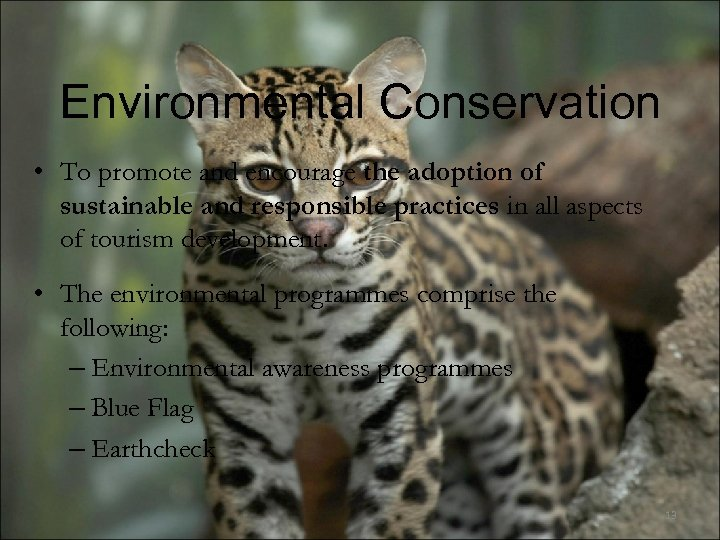 Environmental Conservation • To promote and encourage the adoption of sustainable and responsible practices