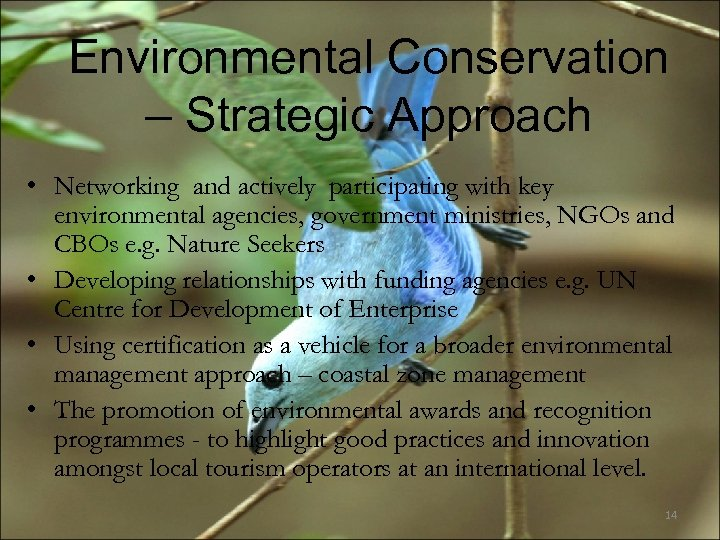 Environmental Conservation – Strategic Approach • Networking and actively participating with key environmental agencies,
