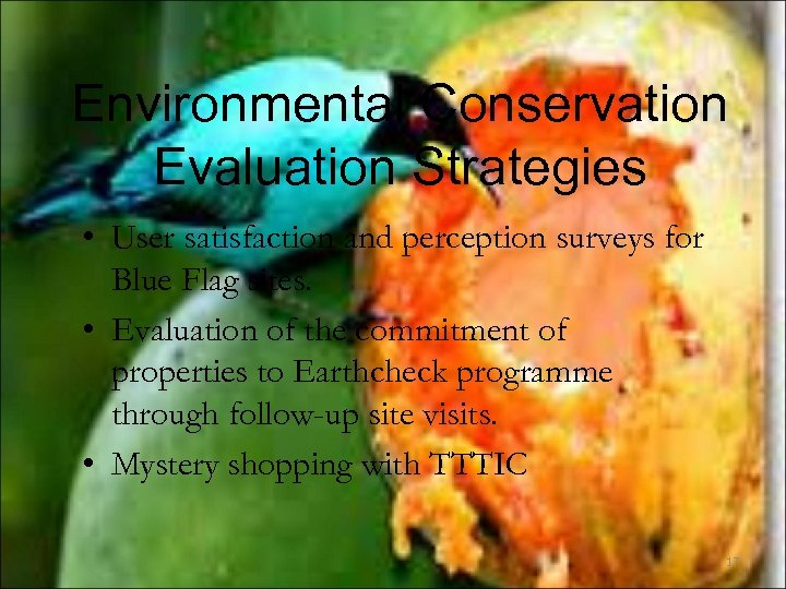 Environmental Conservation Evaluation Strategies • User satisfaction and perception surveys for Blue Flag sites.