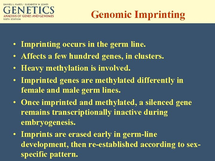 Genomic Imprinting • • Imprinting occurs in the germ line. Affects a few hundred