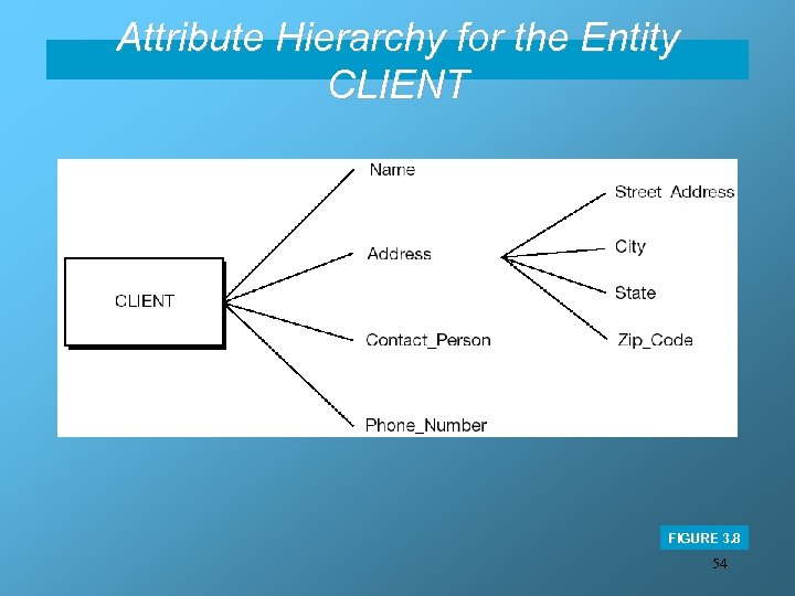 Attribute Hierarchy for the Entity CLIENT FIGURE 3. 8 54