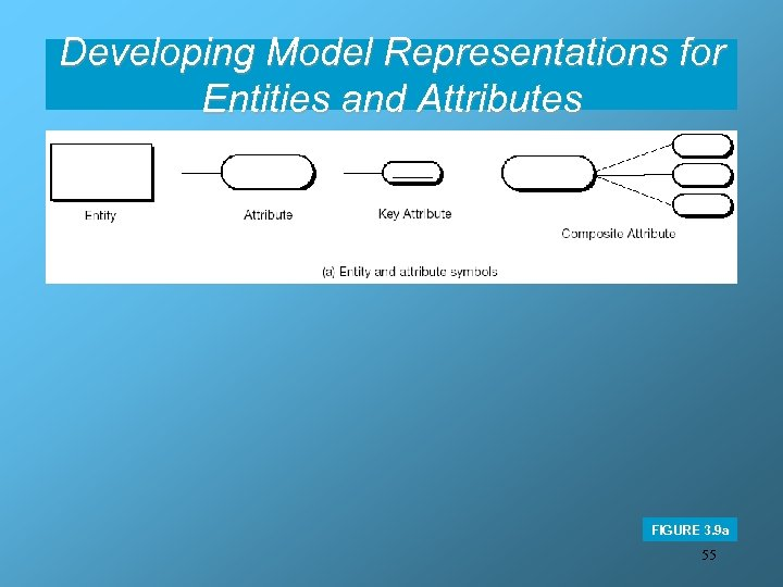Developing Model Representations for Entities and Attributes FIGURE 3. 9 a 55