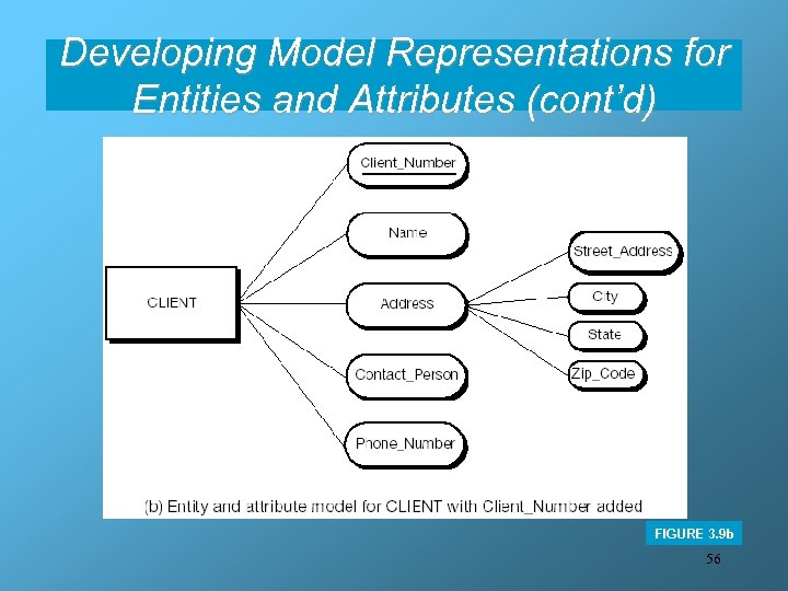 Developing Model Representations for Entities and Attributes (cont'd) FIGURE 3. 9 b 56