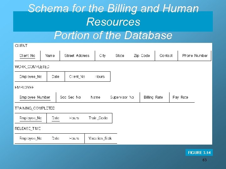 Schema for the Billing and Human Resources Portion of the Database FIGURE 3. 14