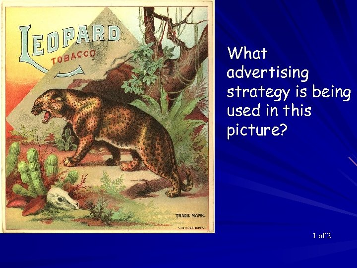 What advertising strategy is being used in this picture? 1 of 2