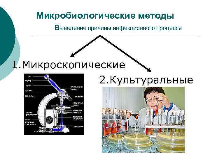 Микробиологические методы выявление причины инфекционного процесса 1. Микроскопические 2. Культуральные
