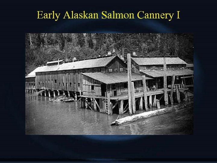 Early Alaskan Salmon Cannery I