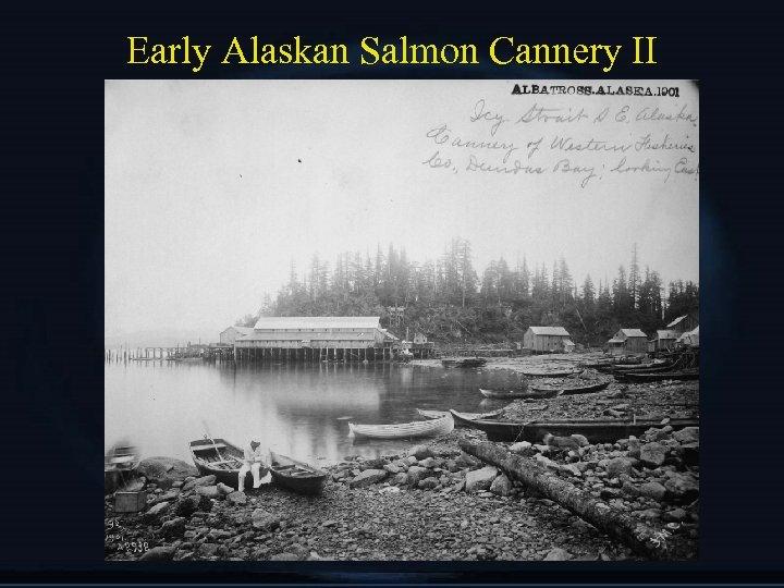 Early Alaskan Salmon Cannery II