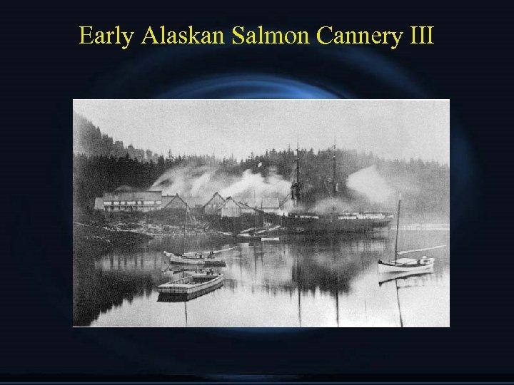 Early Alaskan Salmon Cannery III