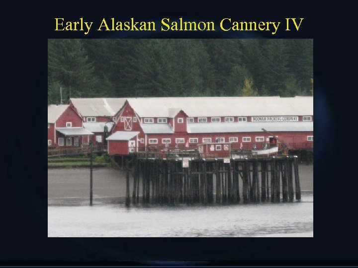 Early Alaskan Salmon Cannery IV