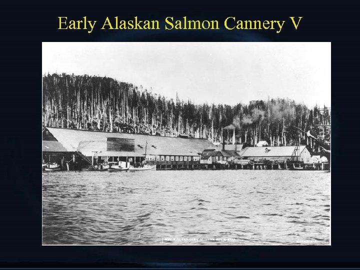 Early Alaskan Salmon Cannery V