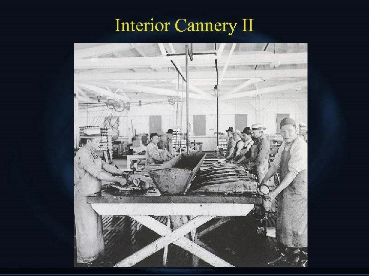 Interior Cannery II