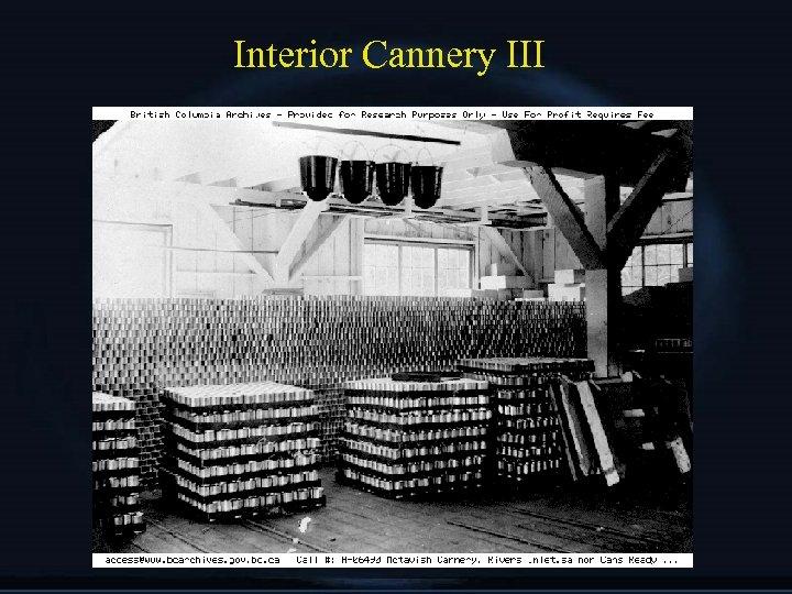 Interior Cannery III