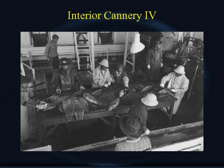 Interior Cannery IV
