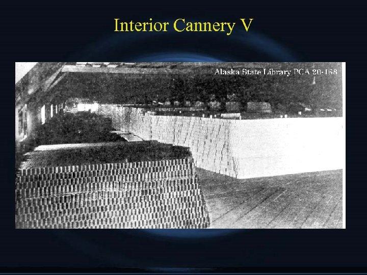 Interior Cannery V