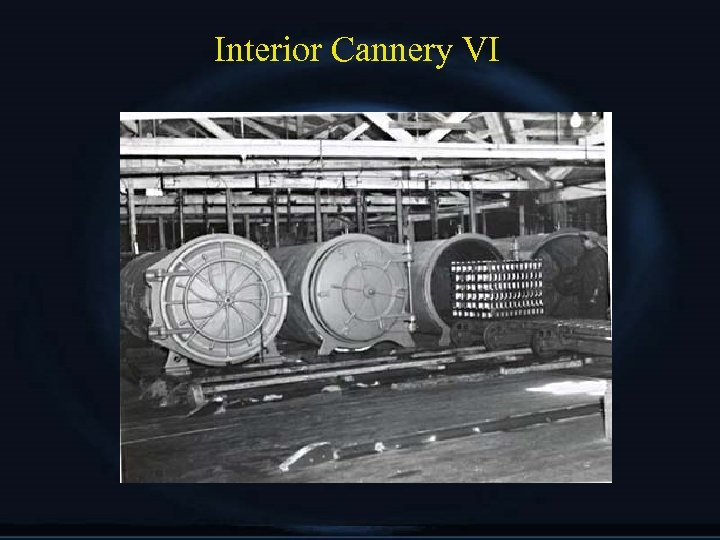 Interior Cannery VI