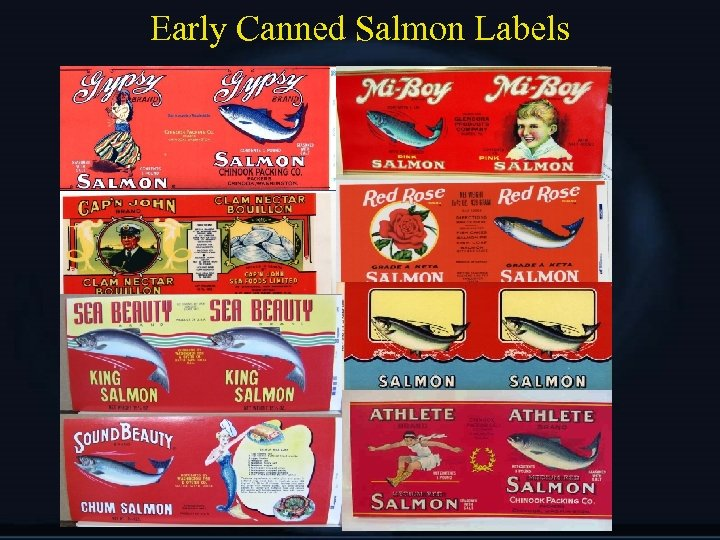 Early Canned Salmon Labels