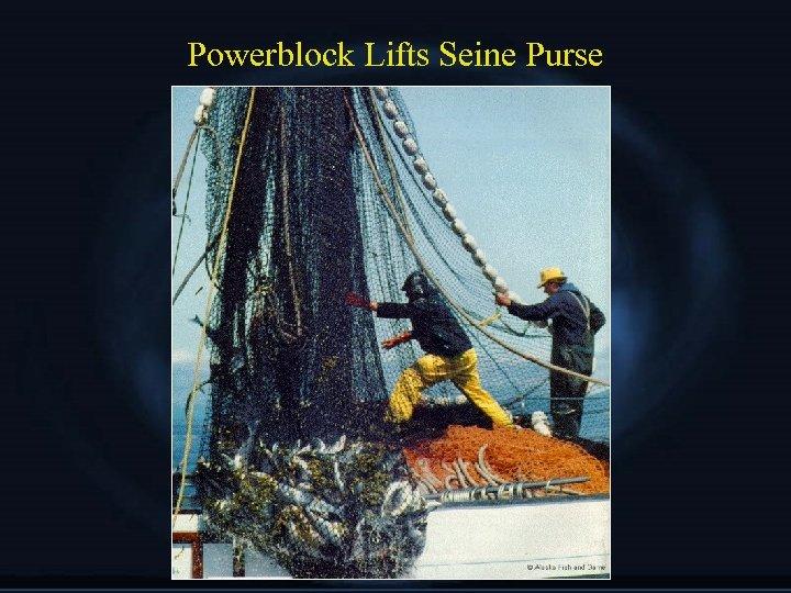 Powerblock Lifts Seine Purse