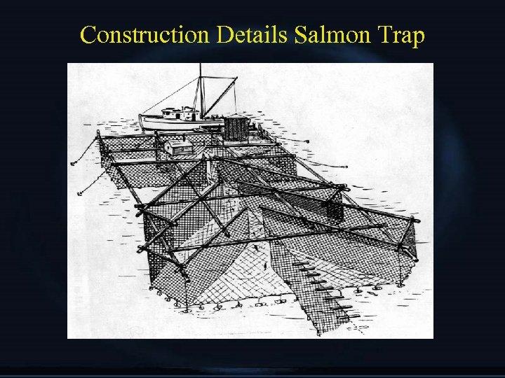 Construction Details Salmon Trap
