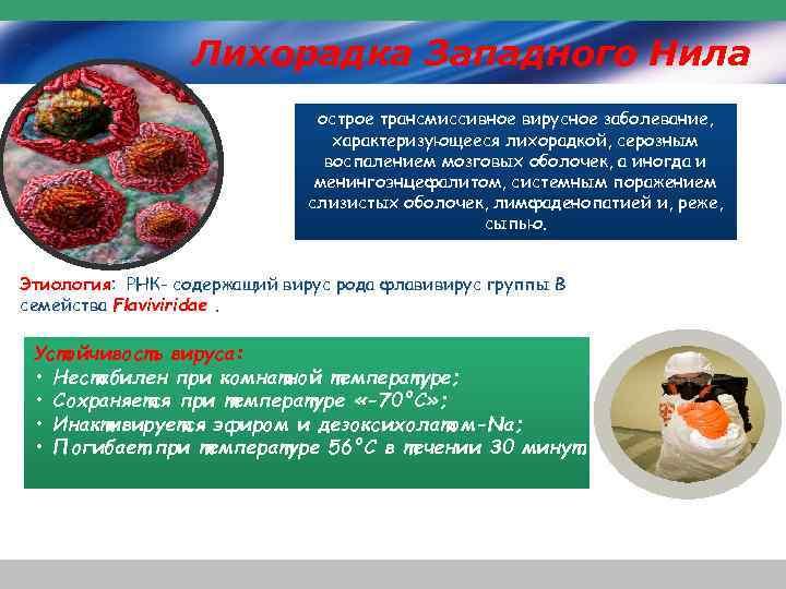 Лихорадка Западного Нила острое трансмиссивное вирусное заболевание, характеризующееся лихорадкой, серозным воспалением мозговых оболочек, а