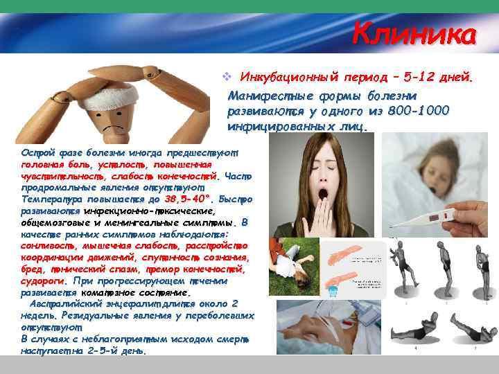Клиника v Инкубационный период – 5 -12 дней. Манифестные формы болезни развиваются у одного
