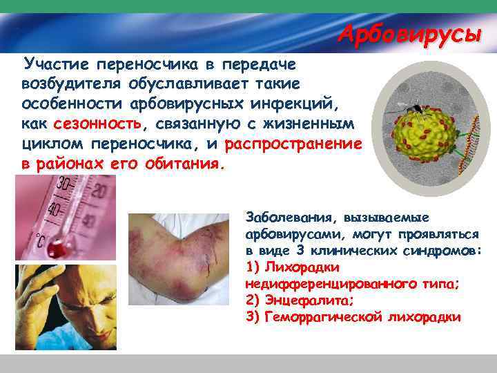 Арбовирусы Участие переносчика в передаче возбудителя обуславливает такие особенности арбовирусных инфекций, как сезонность, связанную