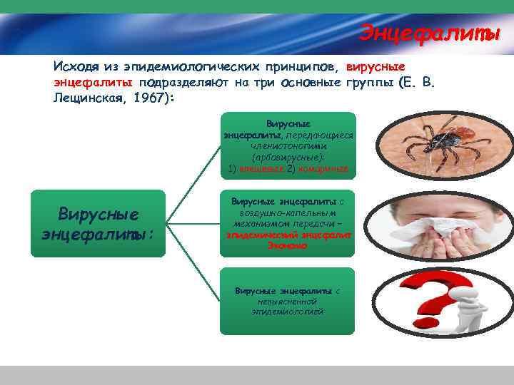 Энцефалиты Исходя из эпидемиологических принципов, вирусные энцефалиты подразделяют на три основные группы (Е. В.