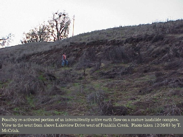 Possibly re-activated portion of an intermittently active earth flow on a mature landslide complex.