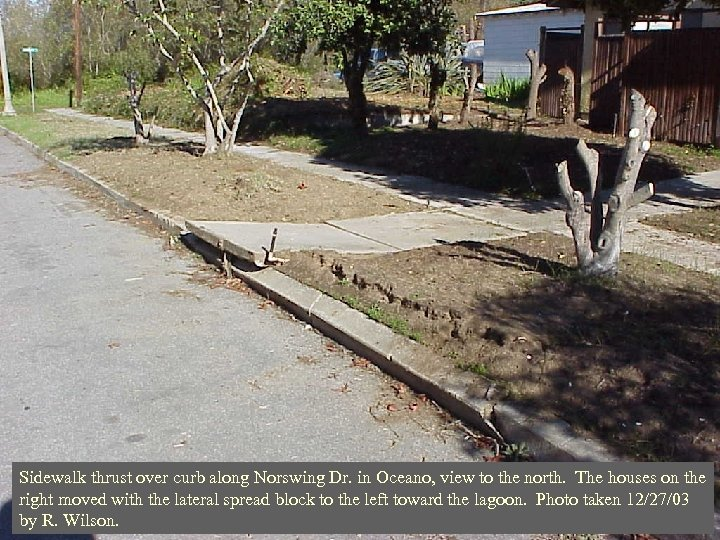Sidewalk thrust over curb along Norswing Dr. in Oceano, view to the north. The