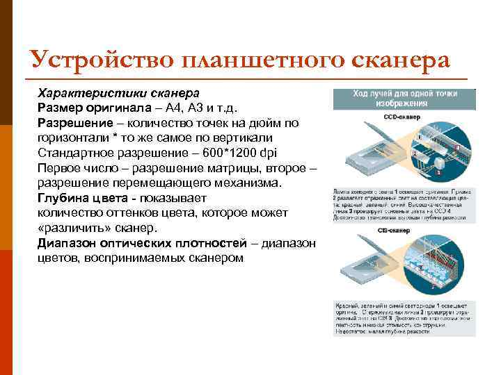 Устройство планшетного сканера Характеристики сканера Размер оригинала – А 4, А 3 и т.