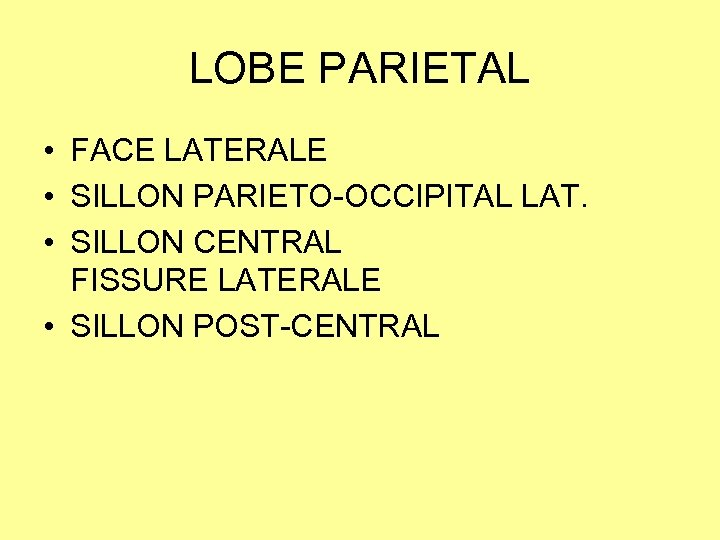 LOBE PARIETAL • FACE LATERALE • SILLON PARIETO-OCCIPITAL LAT. • SILLON CENTRAL FISSURE LATERALE
